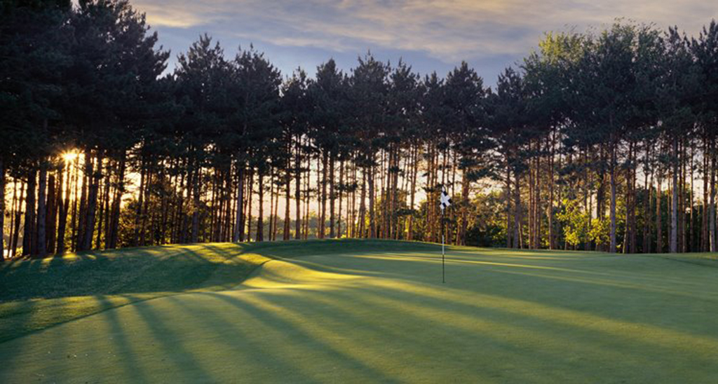 The-Wilds-Golf-Club-Visit-Lakeville-Attractions