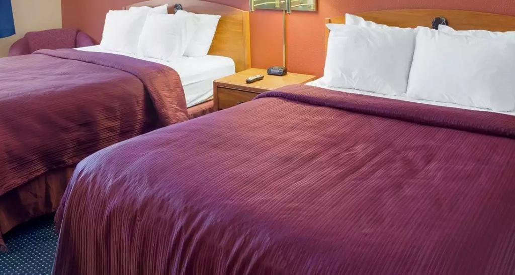 Quality Inn Hotel Standard Room